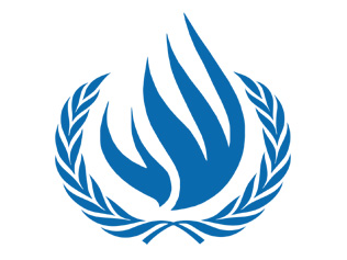Dilemma confronting UN Human Rights mechanisms