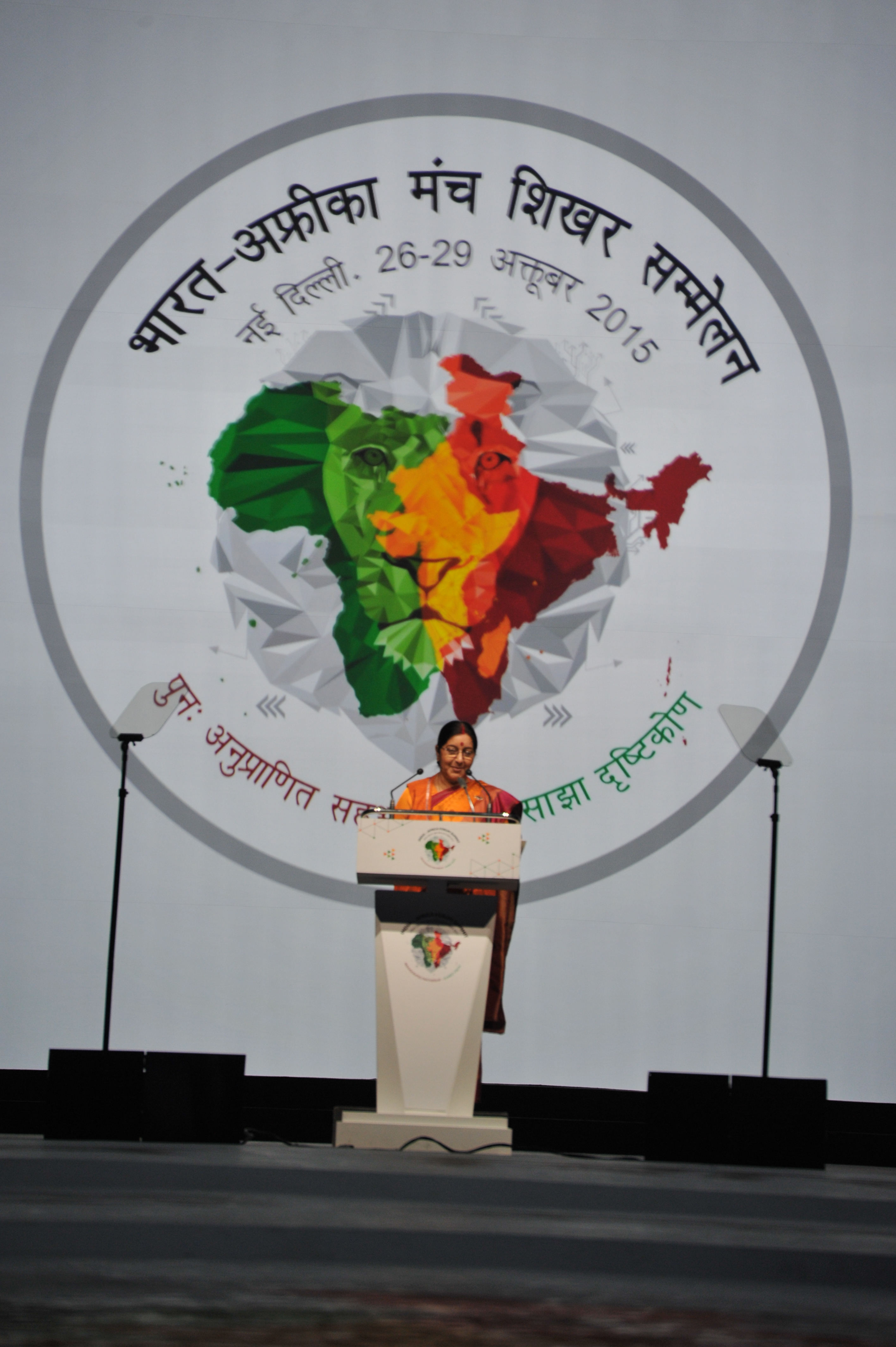 India africa forum summit inaugural remarks by external affairs minister malvernweather Images